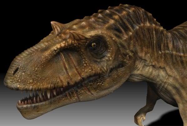 Albertosaurus 01