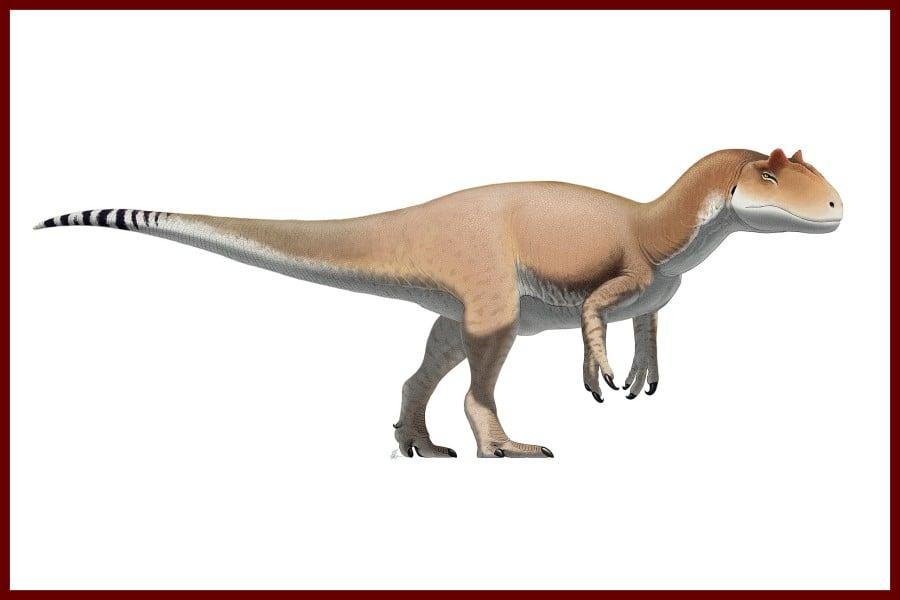 Allosaurus 1877