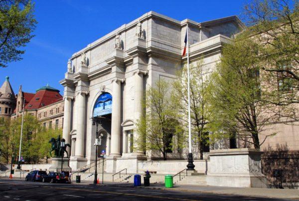 American Museum 01