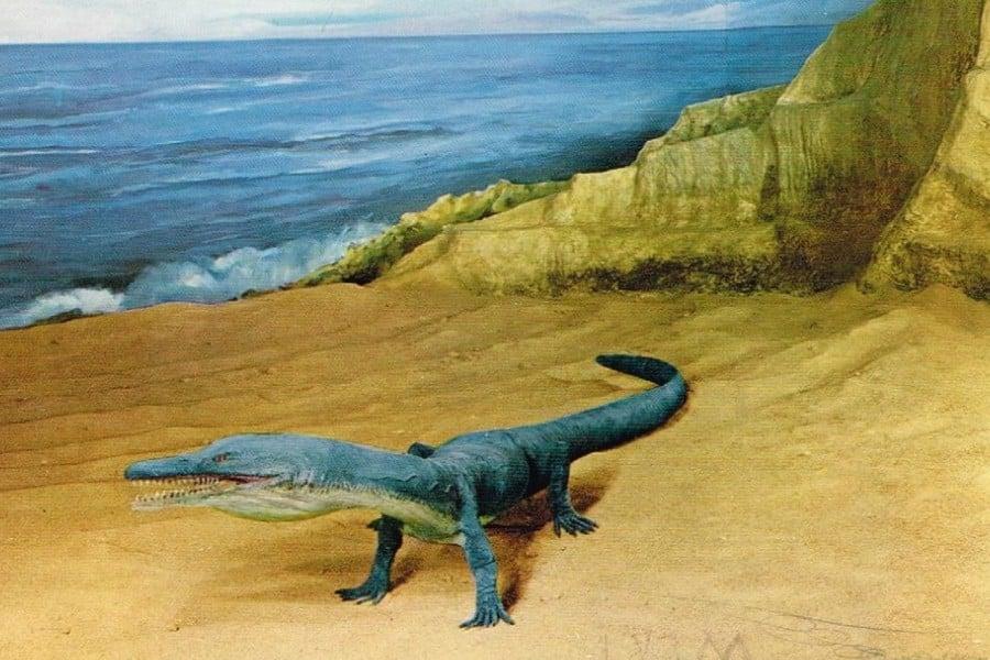 Askeptosaurus 01