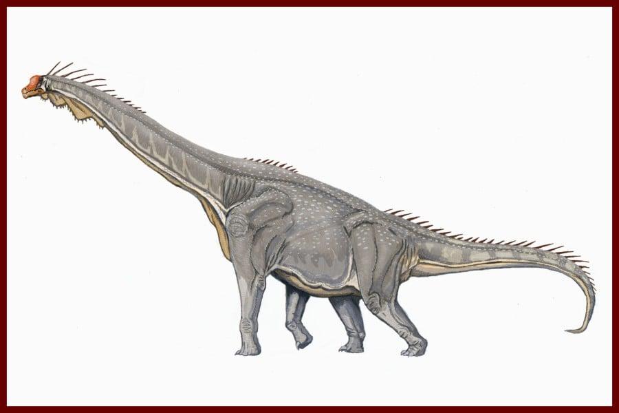 Brachiosaurus 1903