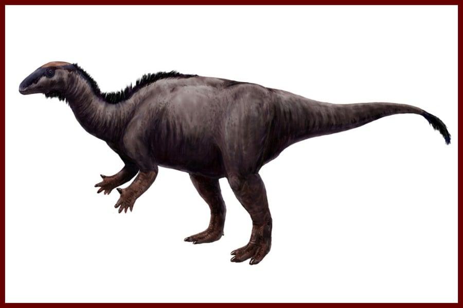 Camptosaurus 1885
