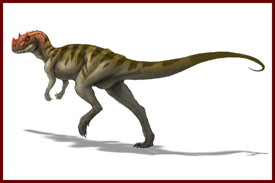 Ceratosaurus 1884