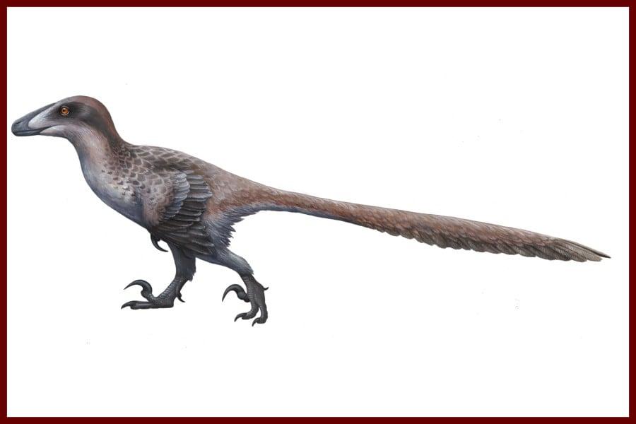 Deinonychus 1969