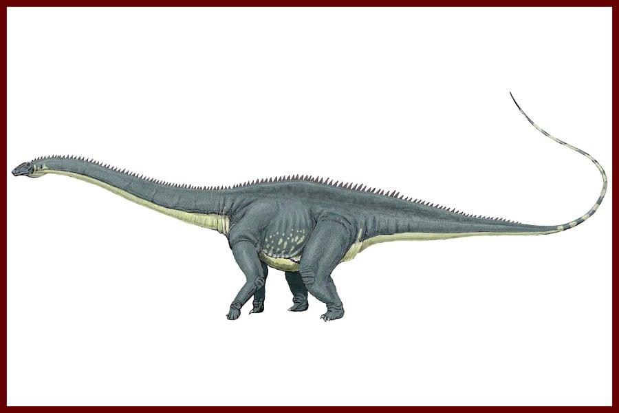 Diplodocus 1878