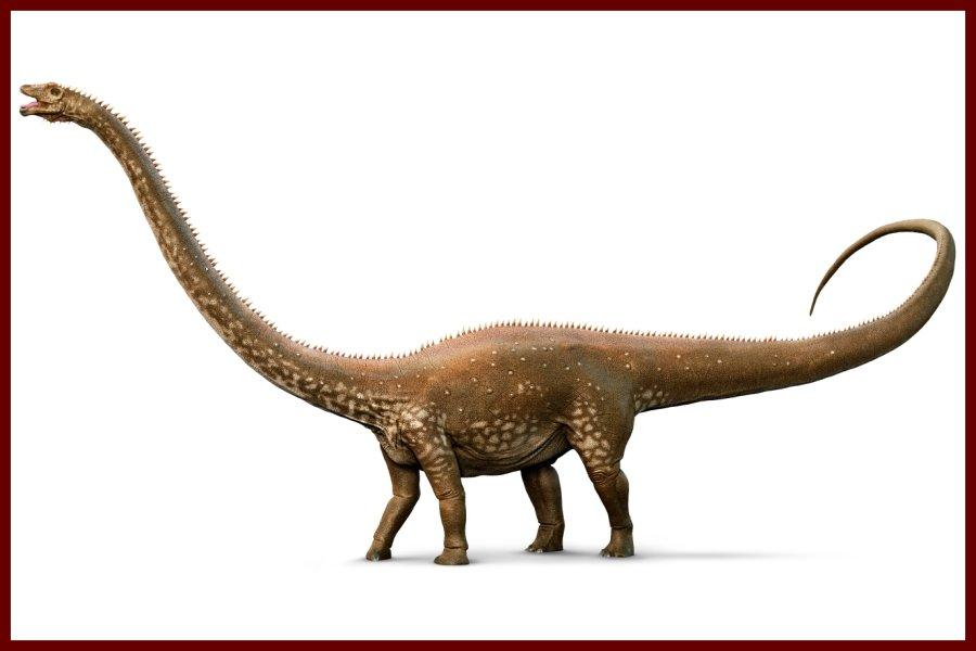 Diplodocus Recordsaurios
