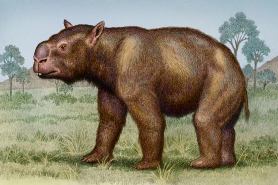 Extintos Naturales Amigos De Los Dinosaurios Y La Paleontologia Hace millones de años existían animales que se encontraban en todas las regiones de la tierra y que habitaban a no incluir en una lista de animales prehistóricos extintos a uno de los dinosaurios más representativo de todos los tiempos seria hacer un listado. extintos naturales amigos de los