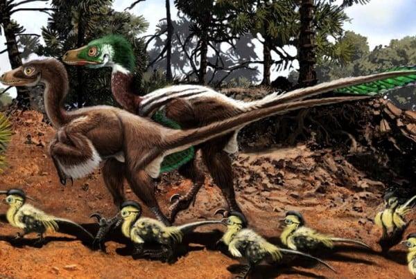 Dromaeosaurus 01