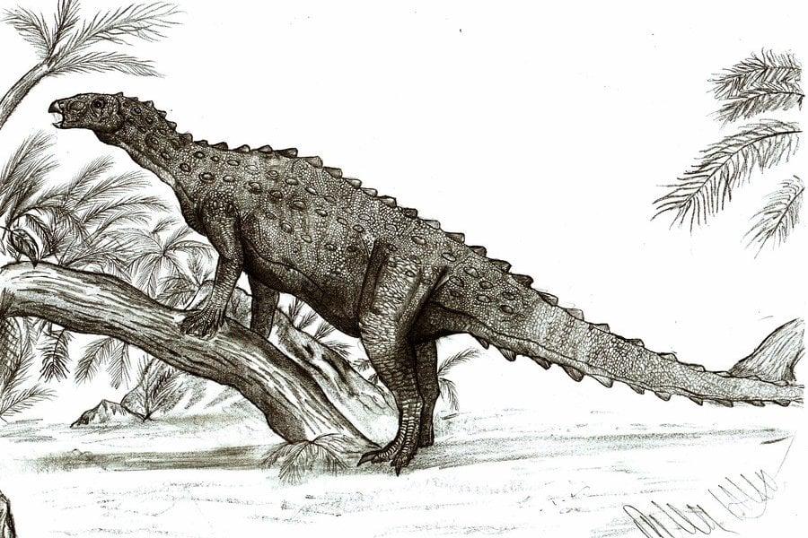 Emausaurus 01