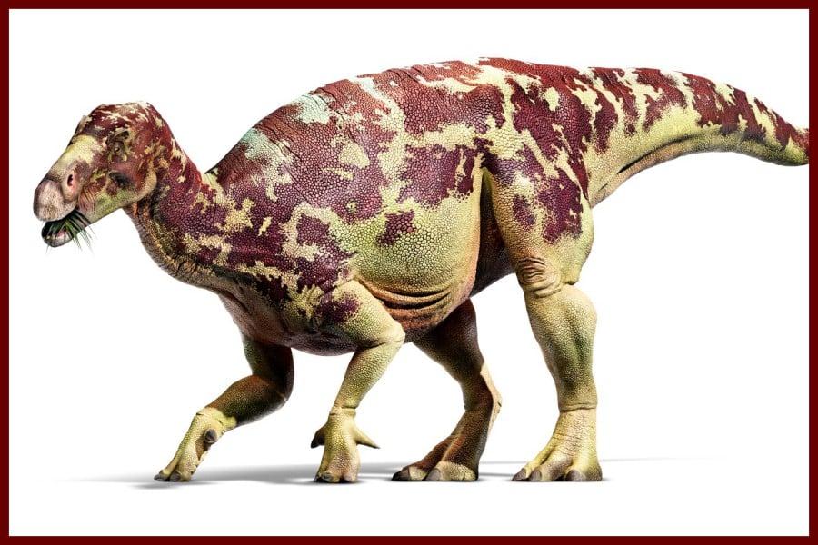 Iguanodon Recordsaurios