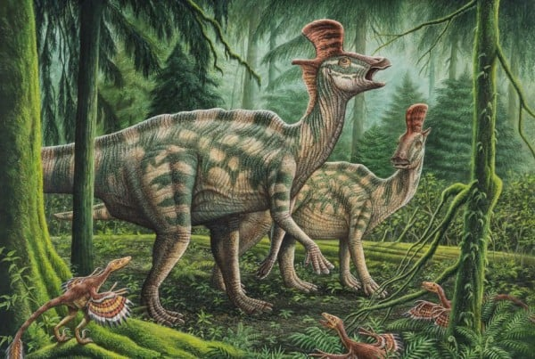 Lambeosaurus 01