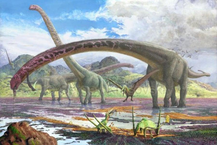 Mamenchisaurus 01