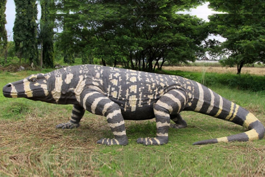 Extintos Naturales Amigos De Los Dinosaurios Y La Paleontologia Encontrará manualidades, artes manuales, dibujos para colorear y otros materiales educativos imprimibles. extintos naturales amigos de los