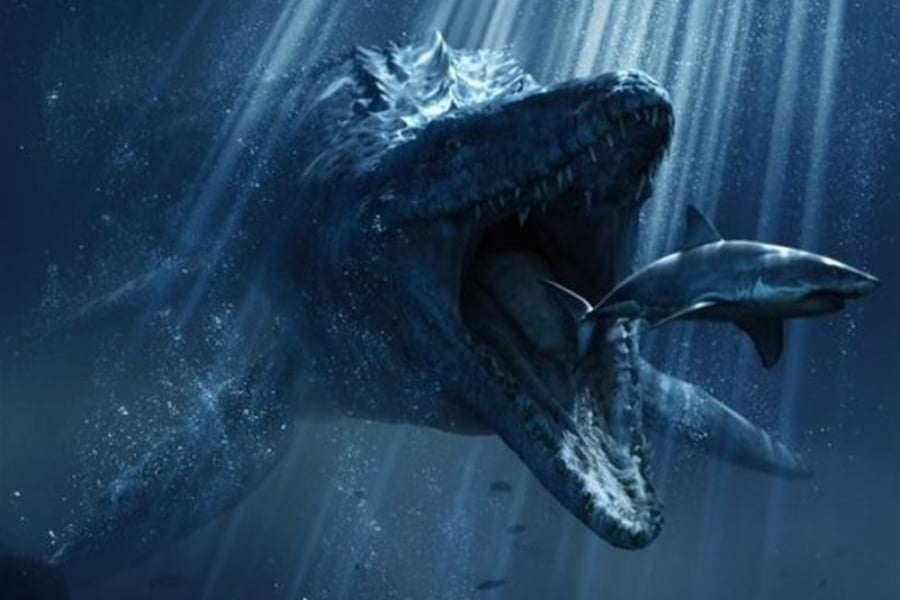 Mosasaurus 01