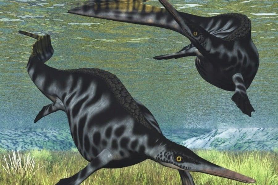 Nanchangosaurus 01