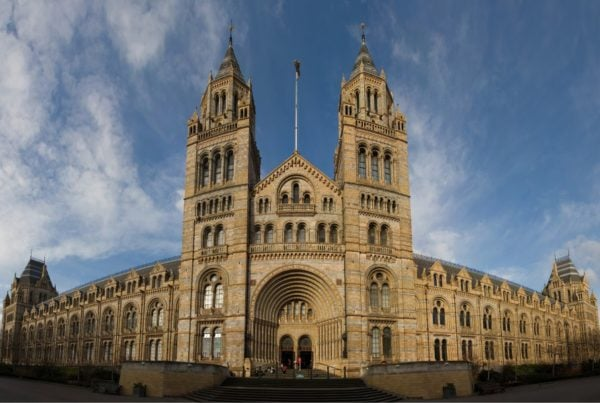 Natural History Museum 01