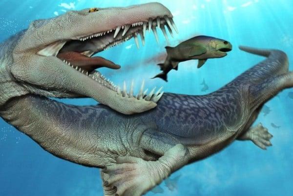 Nothosaurus 01