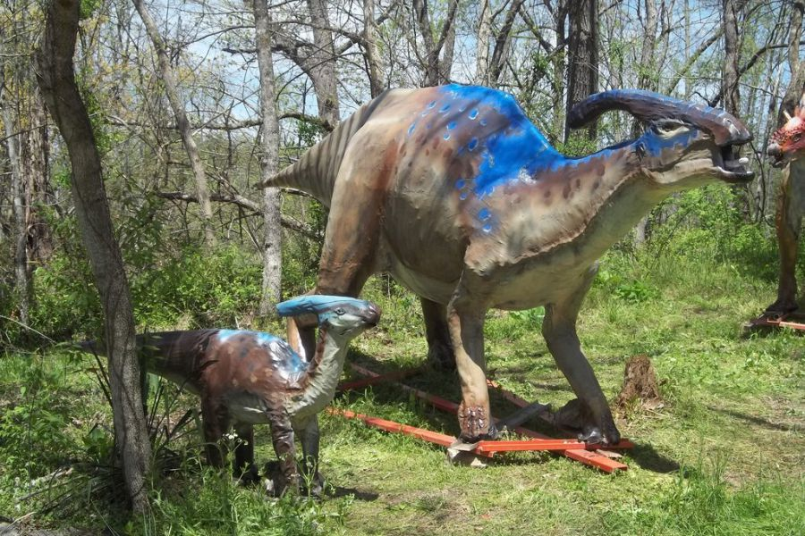 Parasaurolophus 01
