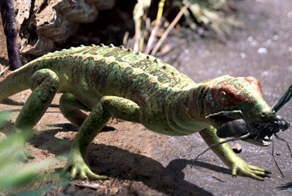 Petrolacosaurus 01