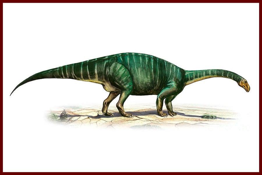 Plateosaurus 1837