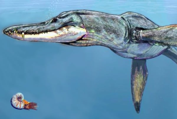 Pliosaurus 01