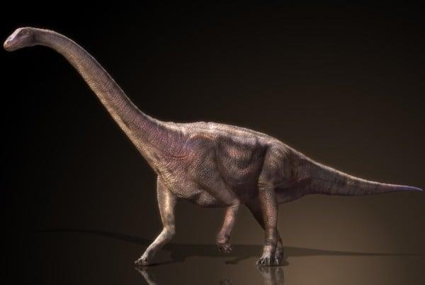Riojasaurus 01