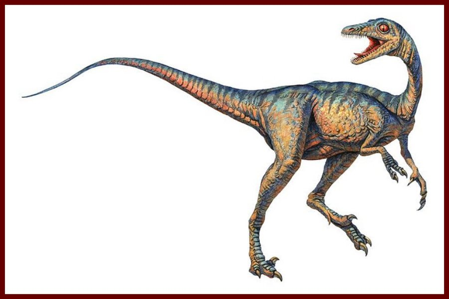 Troodon Recordsaurios