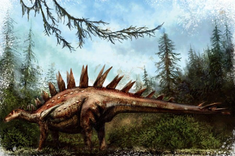 Tuojiangosaurus 01