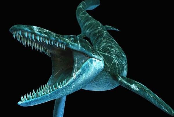 Tylosaurus 01