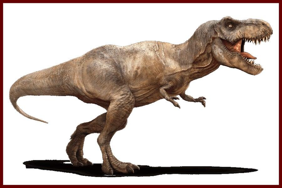 Tyrannosaurus Rex 1905