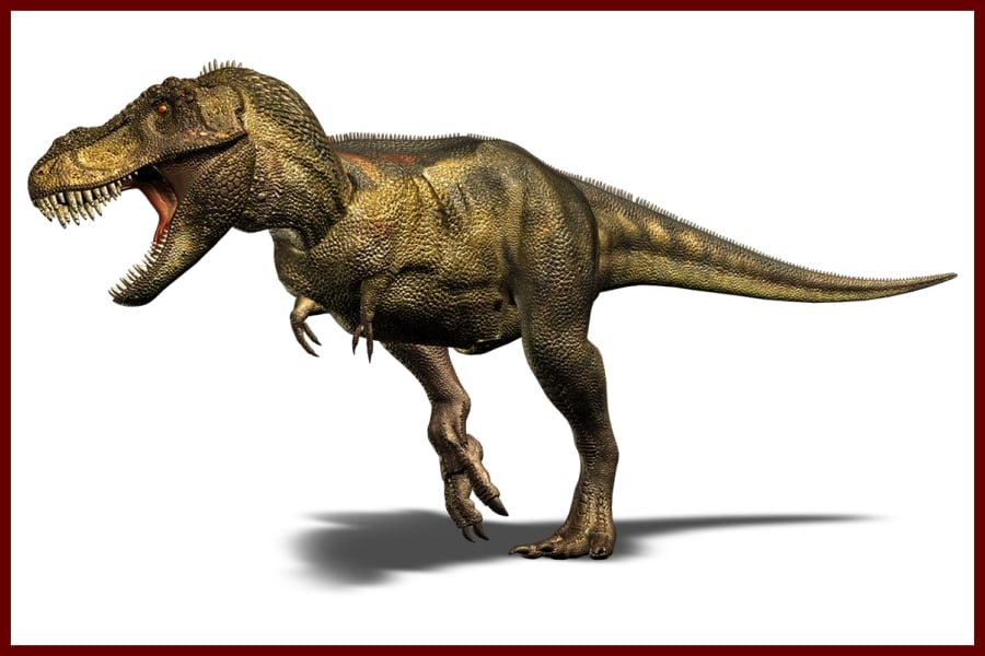 Tyrannosaurus Rex Recordsaurios