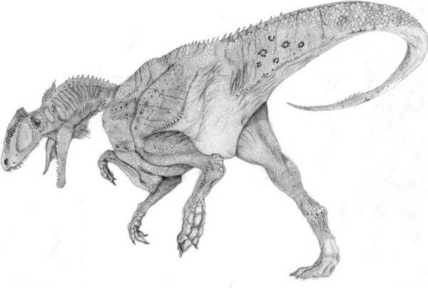 Zupaysaurus 01